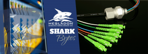 Shark Bytes - Electric Field Testing