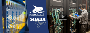 Shark Bytes - Test & Measurement